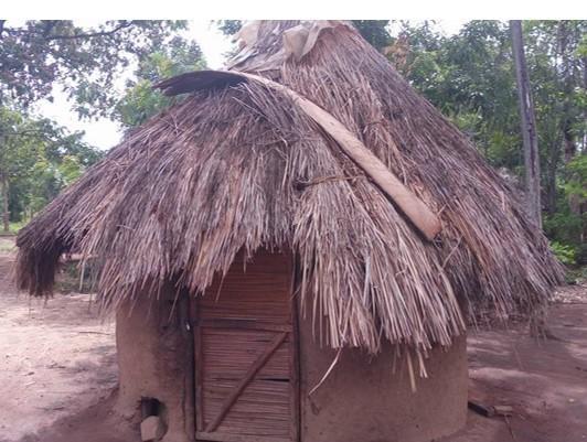 widows-house